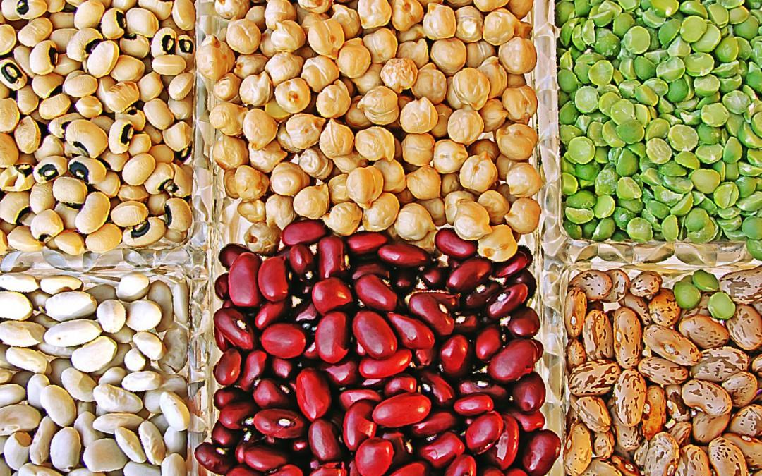 Las legumbres, un alimento que no puede faltar en nuestra dieta