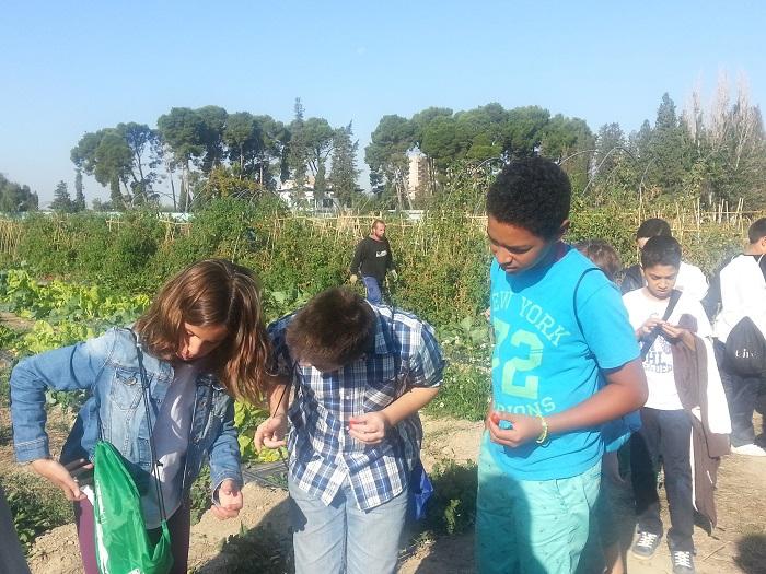 Visitamos con los alumnos del Joaquín Costa un huerto ecológico en Torre Santa Engracia