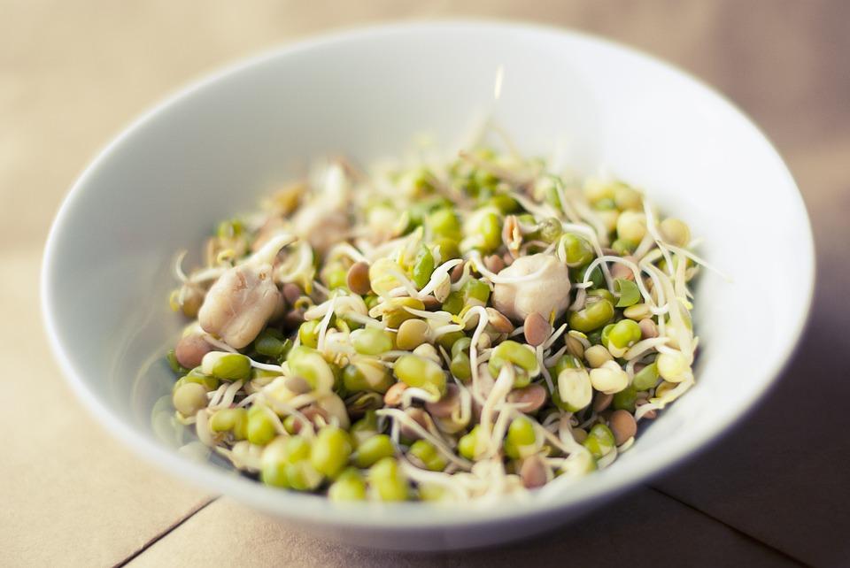 El Alimento del mes: germinados de soja ecológicos