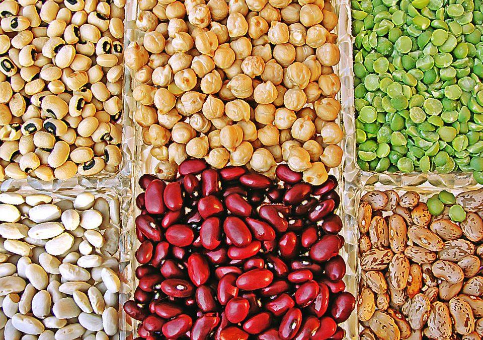 Campaña de Crowdfunding » Descubre las legumbres «