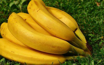 ¿Conoces todas las propiedades del plátano?