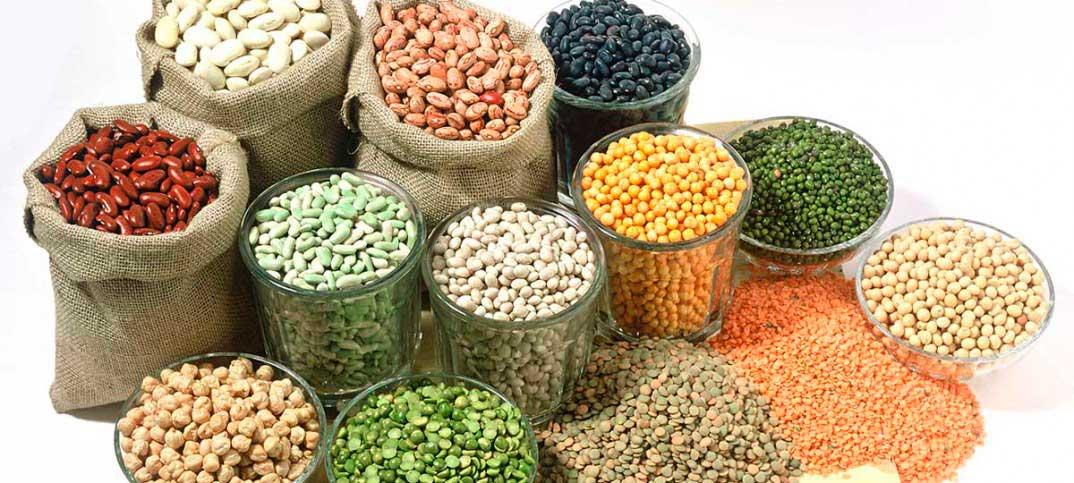 Combi Catering promociona las legumbres en comedores escolares