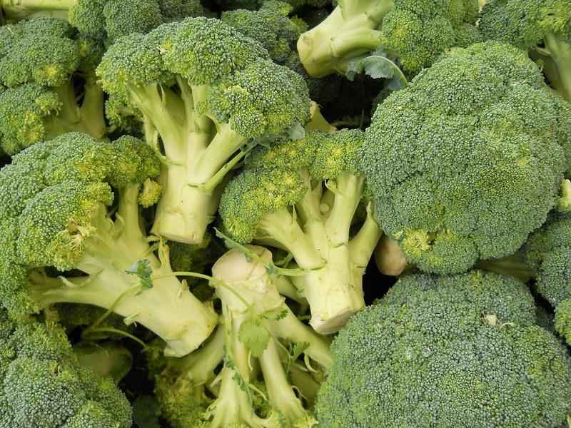 Brócoli ecológico, nuestro alimento del mes