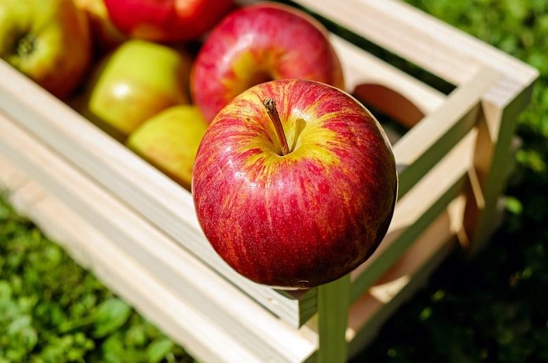 Si quieres estar sano, tienes que comer 800 gramos de frutas y verduras al día