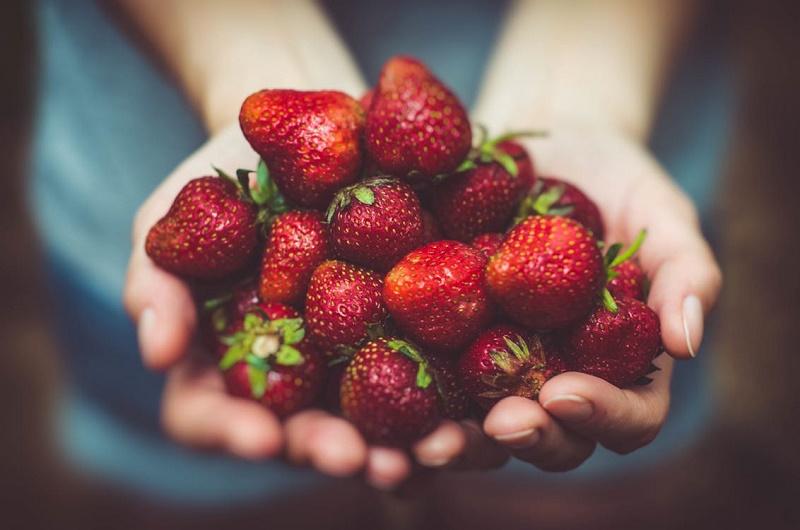 Nuevas guías alimentarias para una alimentación saludable