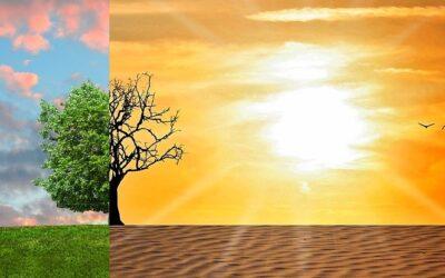 El modelo de alimentación, clave para combatir el cambio climático