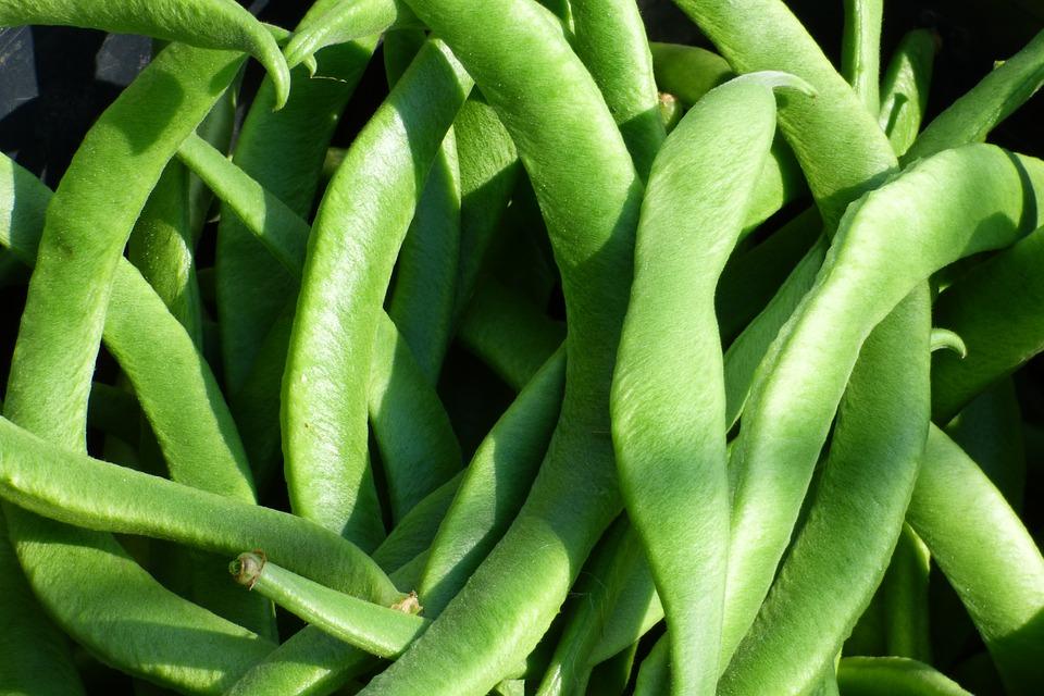 Alimentos de temporada: Propiedades de las judías verdes
