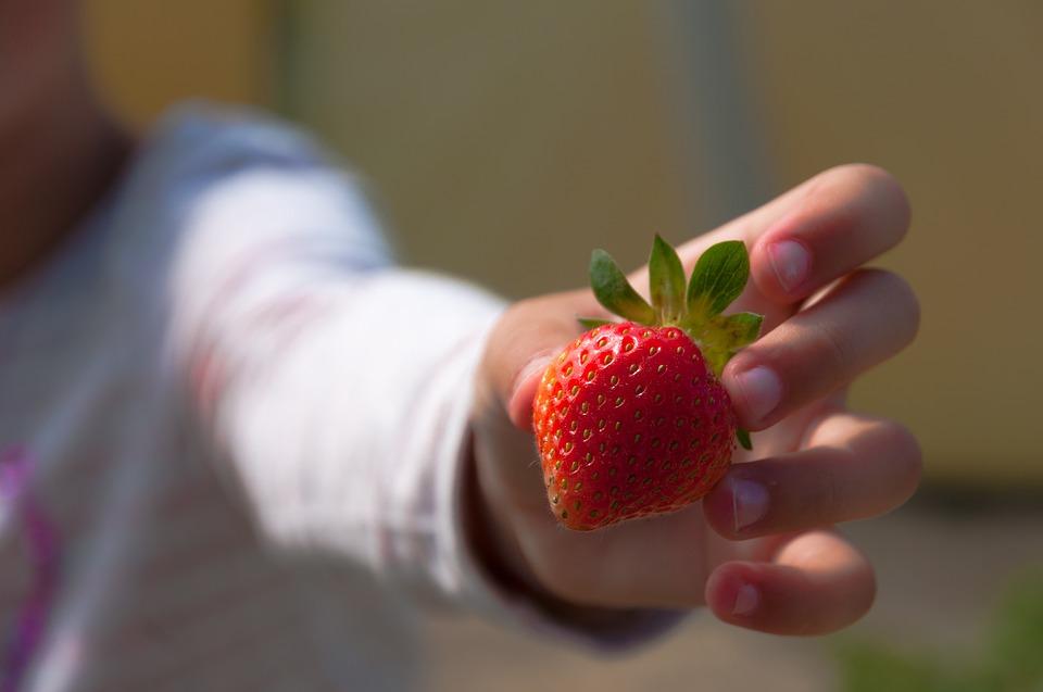 7 consejos para que los peques coman fruta