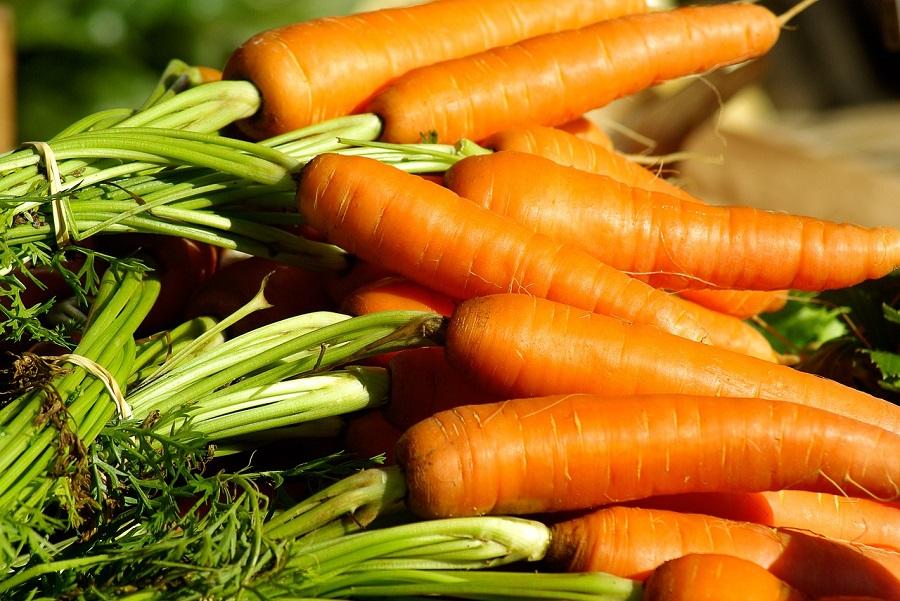 Alimentación sostenible