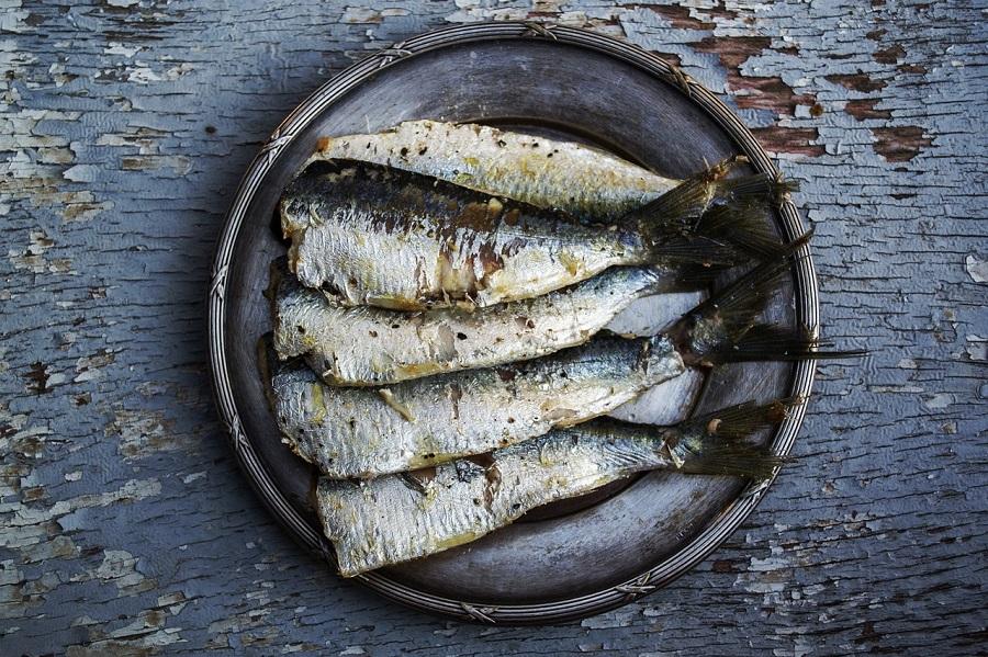 Pescado de temporada: la sardina