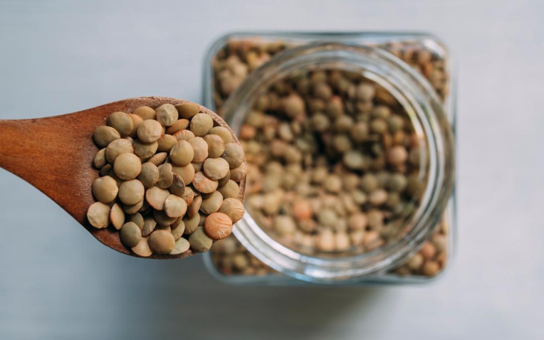 Recetas Saludables con legumbres: Ensalada tibia de lentejas, berza y calabaza