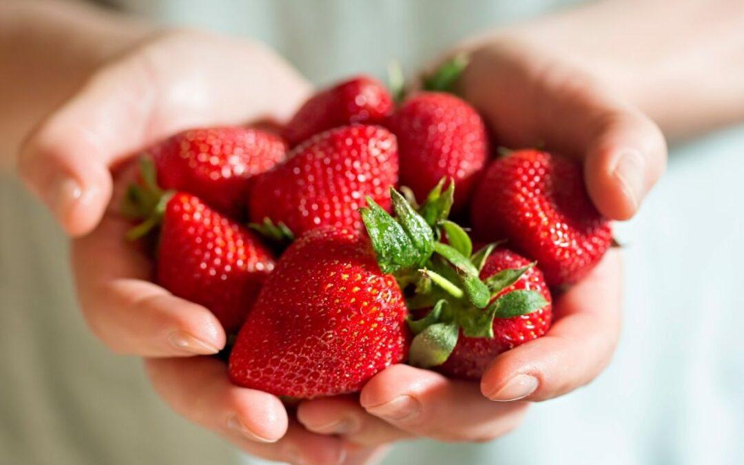 Frutas y verduras de temporada del mes de marzo
